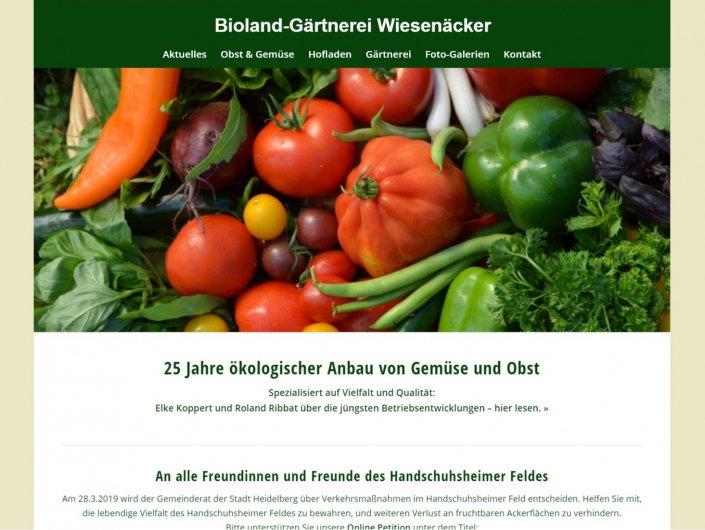 Wiesenaecker Bio Gemüseanbau